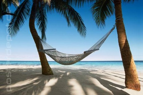 poster empty hammock leere h ngematte sonne strand meer ebay. Black Bedroom Furniture Sets. Home Design Ideas