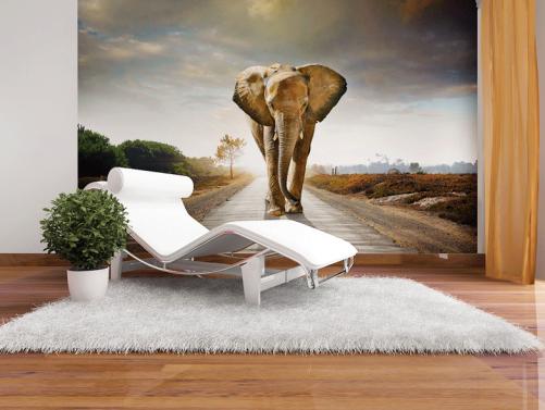 fototapete walking elefant tiere afrika 360 x 270. Black Bedroom Furniture Sets. Home Design Ideas