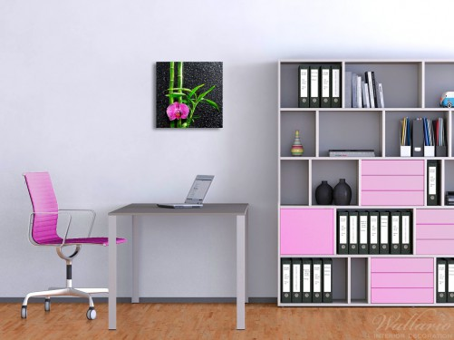 wallario premium acrylglasbild bambus pinke orchidee glas. Black Bedroom Furniture Sets. Home Design Ideas