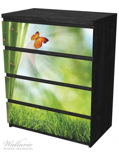 m belfolie schmetterling im gr nen mit bambus. Black Bedroom Furniture Sets. Home Design Ideas