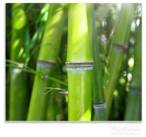herdabdeckplatte bambus im sonnenschein. Black Bedroom Furniture Sets. Home Design Ideas
