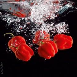 Glasbilder für die Küche mit Genussmotiven • Fototapeten- und ...