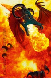 Poster Dragon Inferno – Bild 1