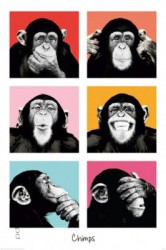 Poster The Chimp - pop