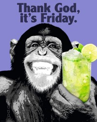 Poster The Chimp - friday