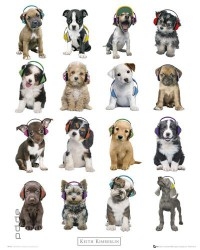 Poster Keith Kimberlin - puppies headphones