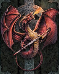 Poster Anne Stokes - celtic dragon