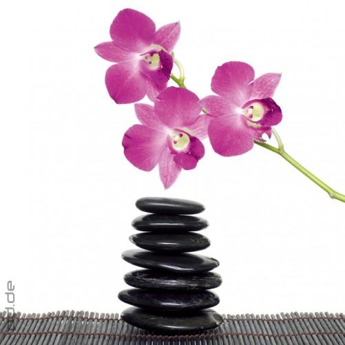 glasbild feng shui schwarze zen steine und orchideen. Black Bedroom Furniture Sets. Home Design Ideas