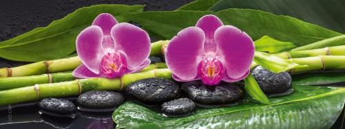 glasbild orchideen bambus und steine. Black Bedroom Furniture Sets. Home Design Ideas