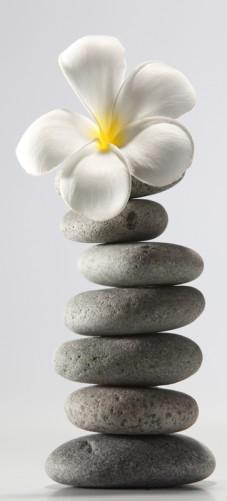 Selbstklebende Tapete Entfernen : Selbstklebende T?rtapete Orchidee auf gestapelten Steinen