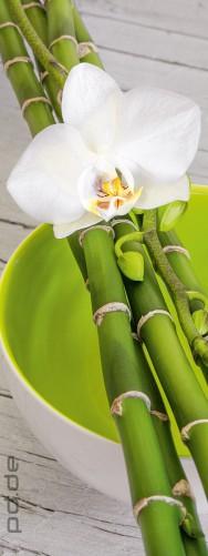 glasbild wei e orchidee auf bambus und keramikschale. Black Bedroom Furniture Sets. Home Design Ideas