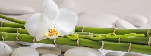 glasbild wei e orchidee auf bambus und steinen. Black Bedroom Furniture Sets. Home Design Ideas